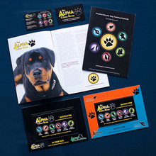 The Alpha Canine Group - promotional material